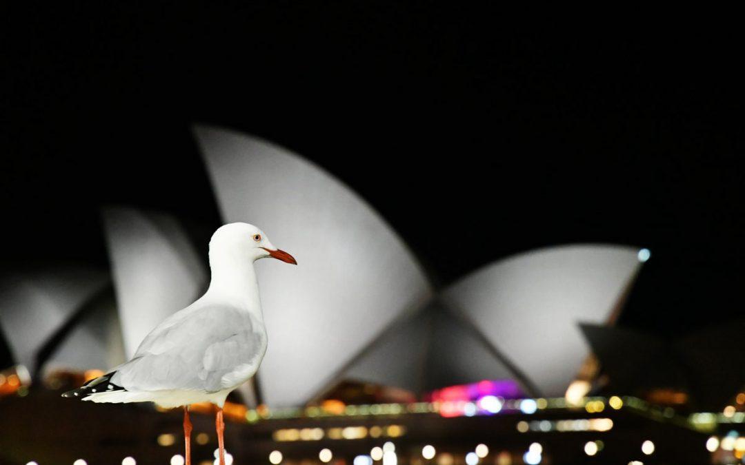 Comment planifier des vacances en famille à Sydney, Australie ?